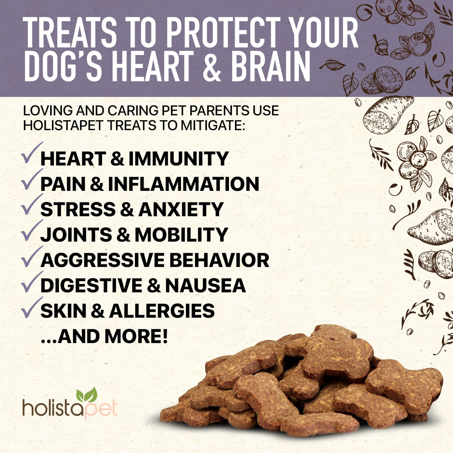 Holistapet Hemp Heart And Immunity Dog Treats Mitigate Pain Inflammation Stress Anxiety Joints Mobility Aggressive Behavior Digestive Skin And More