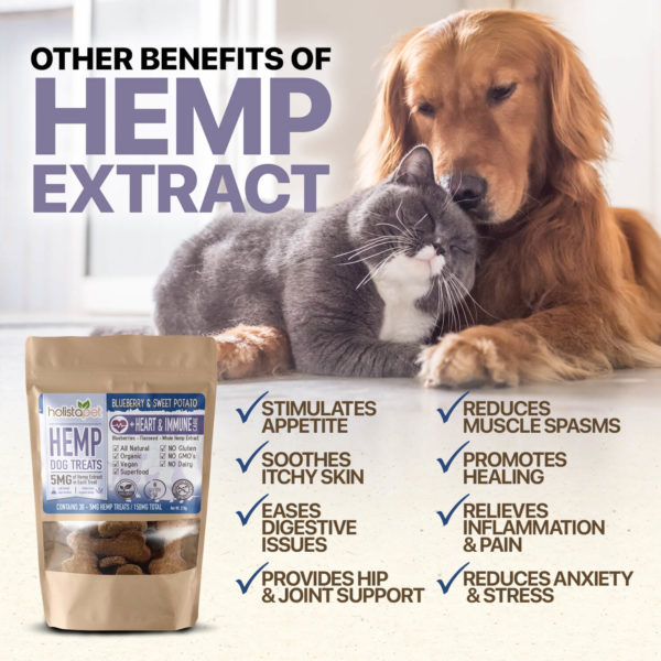 other benefits of hemp extracts used in holistapet hemp dog treats stimulate appetite soothes itchy skin eases digestive issues provides joint support and more