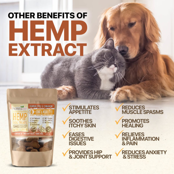 other benefits fo hemp extract joint and mobility care dog treats stimulates appetite soothes itchy skin eases digestive issues provides joint support reduces muscle spasms promotes healing and more