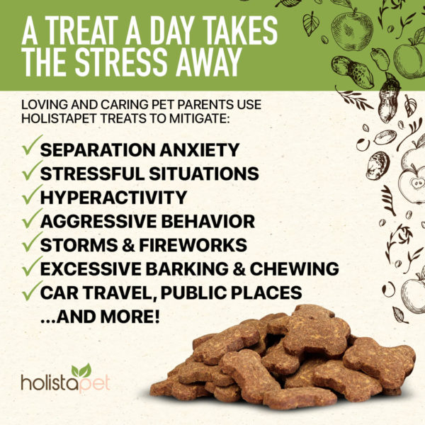 Holistapet hemp stress and anxiety dog treats mitigates separation anxiety stressful situations hyperactivity aggressive behavior storms fireworks excessive barking chewing car travel public places