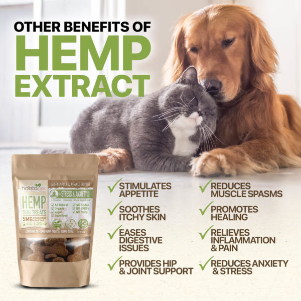hemp extracts other benefits holistapet hemp dog treats stimulates appetite soothes itchy skin eases digestive issues provides hip joint support reduces muscle spasms promotes healing and more